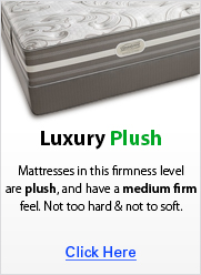 Luxury Plush
